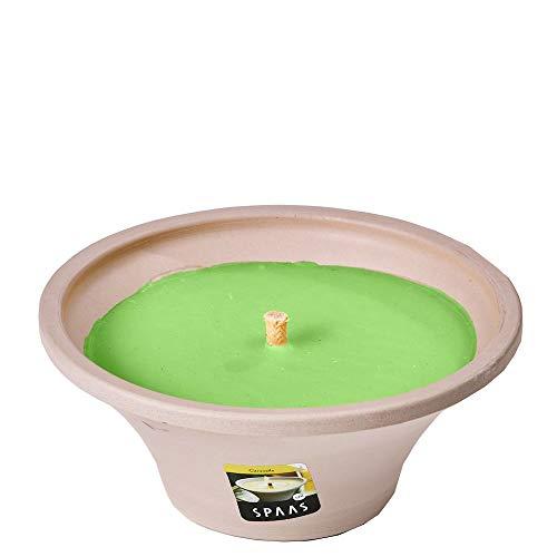 Spaas 6 Citronella Gartenkerzen in Terrakotta-Schale grau Paraffinwachs Fresh Green D 175 mm x H 75 mm H Schale