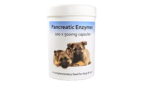 Pancreatic Enzyme Capsules for dogs & cats x 100 Pankreasenzyme für Hunde & Katzen