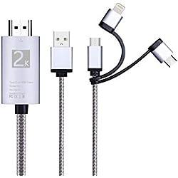 3 en 1 Câble Phone vers HDTV, Reversible/Type-C/Micro USB to HDMI Câble Adaptateur de télévision pour for HTC Legend Auss Compatible avec Phone 11 Pro Max XS/XsMAX/XR/X 8/7-Silver