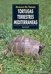 Tortugas terrestres mediterraneas / Mediterranean Tortoises (Manuales Del Terrario)