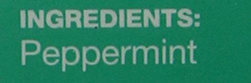 T2 Tea - Just Peppermint Herbal Tea Tisane, 25 Tea Bags in a Box, 37g