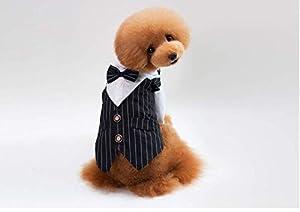 PZSSXDZW Nouveaux vêtements pour Animaux de Compagnie Robe de Costume pour Animaux Mariage d'animaux Monsieur rayé Vêtements de Chien