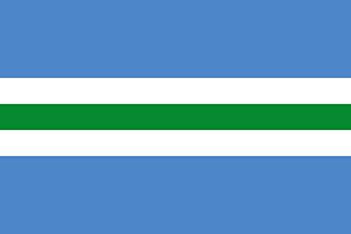 Preisvergleich Produktbild DIPLOMAT Flagge Sõmeru | Municipal flag of Sõmeru, Estonia | Querformat Fahne | 0.06m² | 20x30cm für Flags Autofahnen
