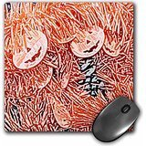 Susans Zoo Crew Flowers - pumpkin garland sketch halloween - MousePad (mp_186639_1)
