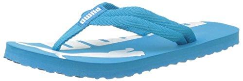 Puma Unisex-Erwachsene Epic Flip v2 Flip Flops, Blau (Blue Danube White 12), 42 EU (Flop Flip Blue 12)