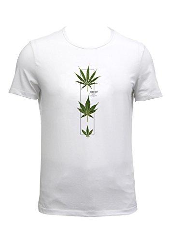 bright white fresh looking t shirt