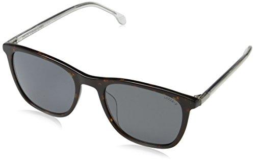 Lozza Herren MATERA 6 Sonnenbrille, Braun (Shiny Brown Havana)