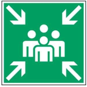 Schild Sammelstelle Kunststoff 20 x 20 cm gemäß BGV A8/ DIN 7010 (Rettungszeichen, Fluchtweg, Sammelplatz) wetterfest