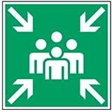 Schild Sammelstelle Kunststoff 20x20cm gemäß ASR A 1.3/BGV A8/DIN ISO 7010 (Rettungszeichen, Fluchtweg, Sammelpunkt, Sammelplatz) praxisbewährt, wetterfest
