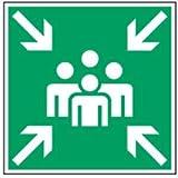Schild Sammelstelle Kunststoff 40 x 40 cm gemäß ASR A1.3/DIN 4844 (Fluchtweg, Sammelplatz, Sammelpunkt) wetterfest