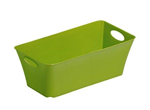 """Rotho Allzweckbox """"Living"""" aus Kunststoff, universell einsetzbar als Aufbewahrungsbox in Kinderzimmer, Büro, Bad, Wohnzimmer etc., 2 l, ca. 25.2x13.4x9 cm (LxBxH), grün, auch andere Farben verfügbar"""