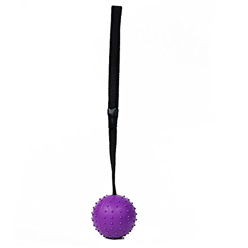 CAOQAO Ultra Tug Hundespielzeug 30Cm Ball Mit Bogenseil Für Hund Unverwüstlichen Gummiseil Ball Spielzeug Zu Kauen Interaktives Resistant Saubere Zähne, ()
