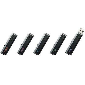 Sony Micro Vault Classic USM-EV USM256EV USB 2.0 2GB Pen Drive (Black)