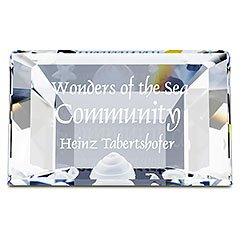 Swarovski 2007 scs title plaque wonders of the sea crystal – retired 898130
