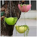 Generic 3 Pcs Plain Color Round Plastic Hanging Planter Flower Pot with Metal Chain for Home and Garden Indoor Plant (Multico