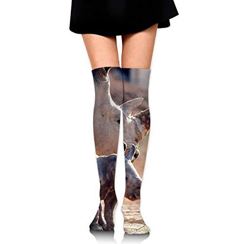 XCVNBX Rhinoceros with Her Baby White Rhino Knee High Graduated Compression Socks for Unisex - Best Medical, Nursing, Travel & Flight Socks - Running & Fitness