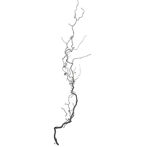Dekozweig DESCENA-Korkenzieherast (Mind. 100 cm lang; 40 cm breit) Frühlingsdeko Natur Korkenzieherhasel Oster-Deko mit Zweigen Hängeast Vogelzubehör Naturast für Vogelkäfig
