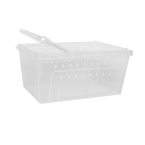 Wasserreptil Zuchtbox Transportbox Fütterung Brutbox für Terrarium Aquarium Reptil Tank - Weiß, 32x22x15cm
