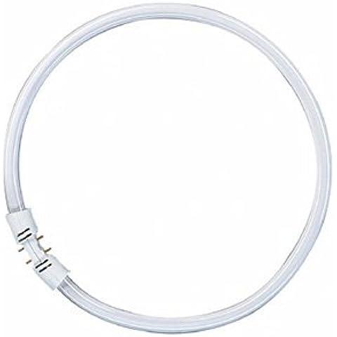 Osram Lampada fluorescente FC 840 Cool White
