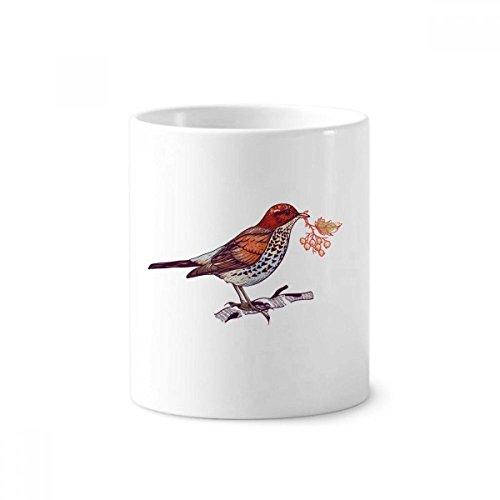 DIYthinker Vögel Zweig Blumen Früchte Keramik Zahnbürste Stifthalter Tasse Weiß Cup 350ml Geschenk 9.6cm x 8.2cm hoch Durchmesser Zweig Cup