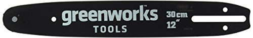 Greenworks Tools 29517 Guide pour tronçonneuse Vert, 30cm
