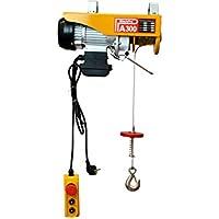 WinchPro - Polipasto Electrico para Elevacion de Cargas 300kg - AG/EH-300