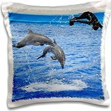 Kike Calvo Dolphins - Two dolphins and a trainer diving at Oceanographic Aquarium in Valencia, Spain - 16x16 inch Pillow Case