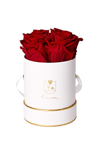 l'unimoon Fair Trade Infinity Roses/Moon Collection/Rosen Arrangement konservierte Rosen (Ruby Red)