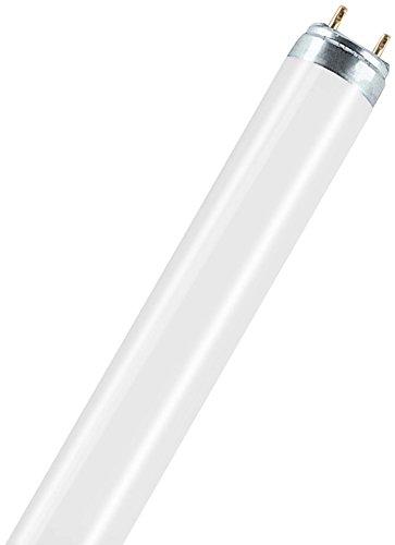osram-30-watt-natura-t8-fluorescent-lamps-sockets