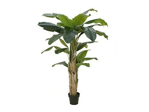 Unbekannt EUROPALMS Bananenbaum, 170cm (Kunstpflanze)