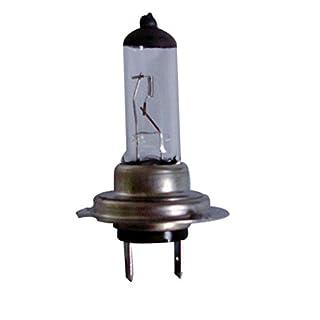 ASD Tech Leuchtmittel H7Leuchtmittel Typ H7zu Einheit