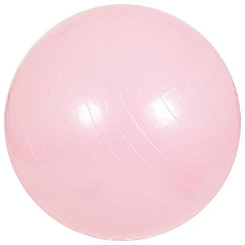 Ballon de gym 55cm fuchsia