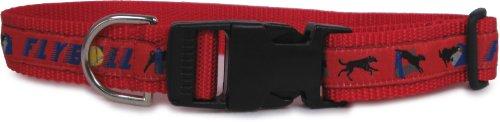 Dog Ink Flyball Hund Halsband und Leine Set, Medium, Rot -