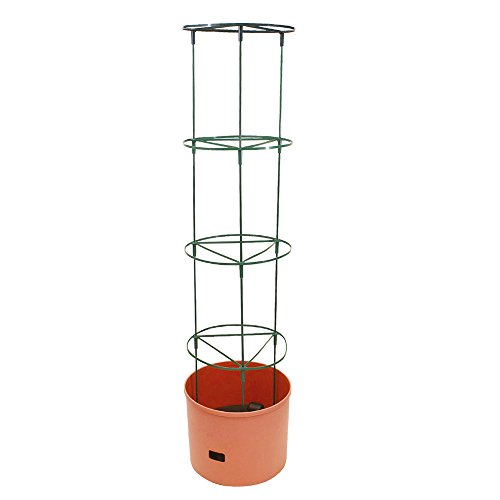 Bio Green MT JBT KT Maxitom Jumbo Pflanzenturm Terracotta Topf Durchmesser 38 x 30 cm, Gesamthöhe 148 cm, 20 und 8 L