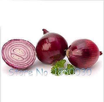 potseed nuove varietà di cipolla nutrienti semi cinesi scalogno seed vegetable seeds orto 100pcs
