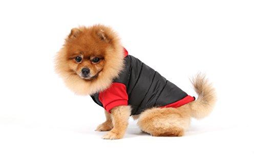 Doggy Dolly W110 Hundejacke Wasserabweisend mit Kapuze, schwarz/rot, Wintermantel / Winterjacke, Größe : S - 5