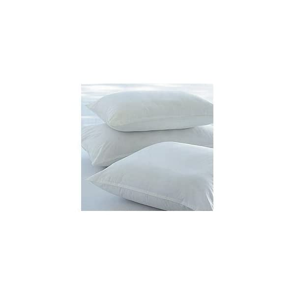 "18 ""Cushion Inners-pack of 4 31VosfZkIaL"