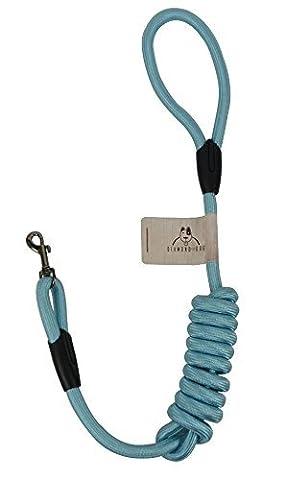 DIAMOND DOG Hundeleine - für die ideale Tour mit ihrem Vierbeiner (Blau)