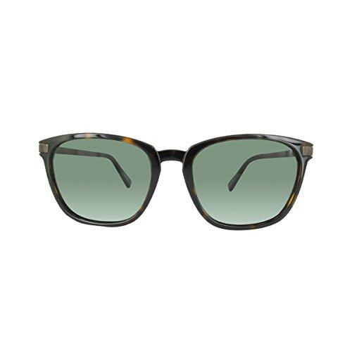 Zegna Sonnenbrille Ermenegildo (Ermenegildo Zegna EZ0039 C54 52R (dark havana / green polarized) Polarisierende Sonnenbrillen)
