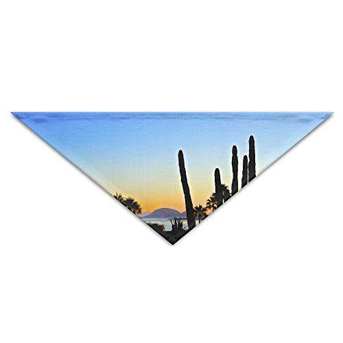 Gxdchfj Mexican Cactus Dusk Clouds Tree Turban Triangle Scarf Bib Scarf Accessories Pet Cat and Baby Puppy Saliva Dog Towel (Der Cloud 9 Kostüm)