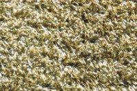 Kümpers Saugaktiv - Die waschbare Türmatte Farbwahl - 75x130 cm , Farbwahl:Beige