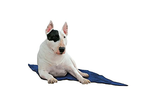 Aqua Coolkeeper Hunde Kühlmatte blau, 60x50cm - 3