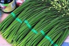 150 AIL CHIVE 2017 (toutes les graines de légumes Heirloom non-ogm!)