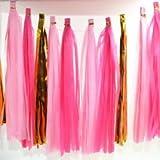 #6: AMFIN® Tissue Paper Tassels Garland Wedding Home Decor Crafts Birthday Party Events Supplies Balloons Ribbon - Pink (20 Pcs , 4.2 m)