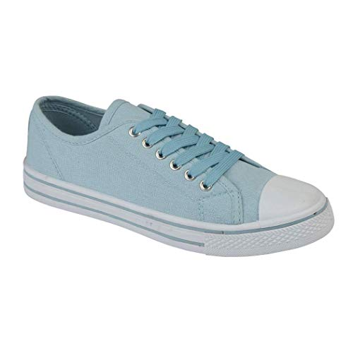 release date 23b88 65266 Ladies Baltimore Academy Low Hi Top Canvas Toe Cap Lace Up Pumps Plimsoll  All Star