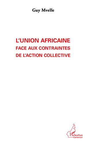 L'Union Africaine face aux contraintes de l'action collective