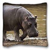 My Honey Pillow Pillow Cover Hippopotamus Beach S Water Gray Huge 18 dans * 18 Twin sides