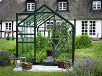 Juliana Halls Popular grün 106 Gewächshaus