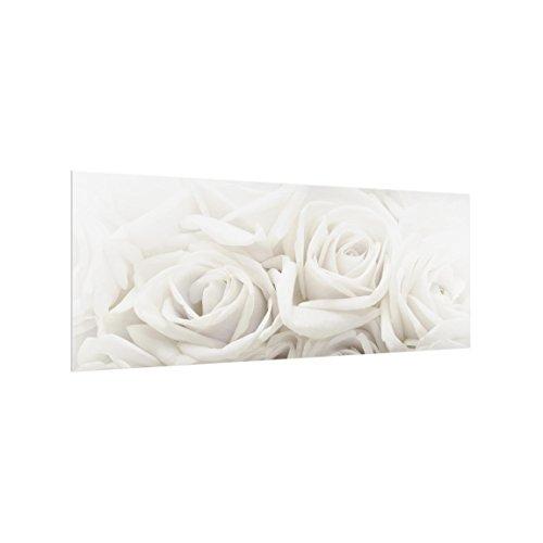 Bilderwelten Spritzschutz Glas - Weiße Rosen - Panorama Quer, HxB: 50cm x 125cm