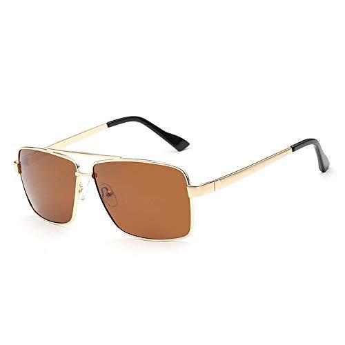 Big Frame Fashion Sonnenbrillen Polarized Driving Sonnenbrillen Polaroid Herren Sonnenbrillen Brille (Color : Braun, Size : Kostenlos) (Polaroid Ray Ban)